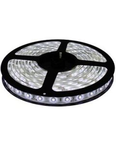 LED lenta 14.4W/cw 12V IP20
